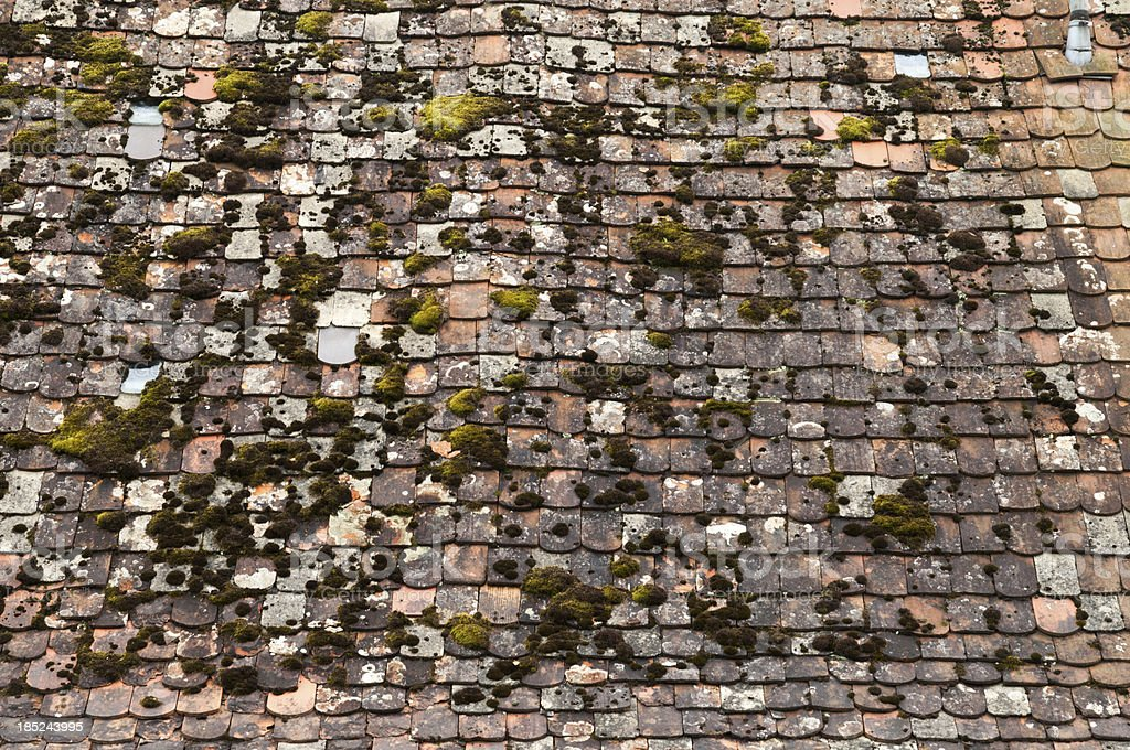 Old moss-covered roof with tiles stock photo
