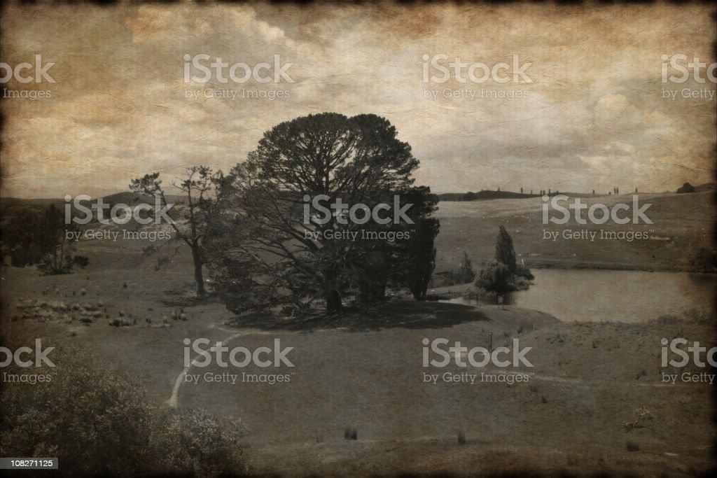 old New Zeland landscape photo royalty-free stock photo