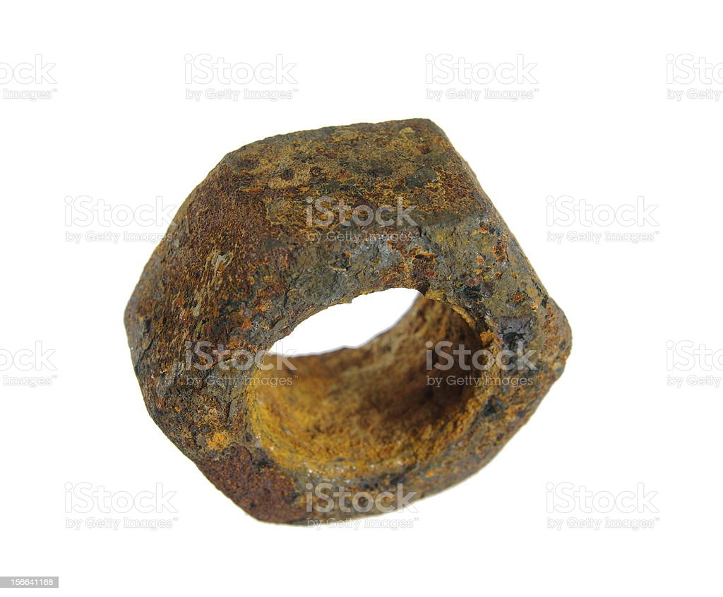 old nut royalty-free stock photo