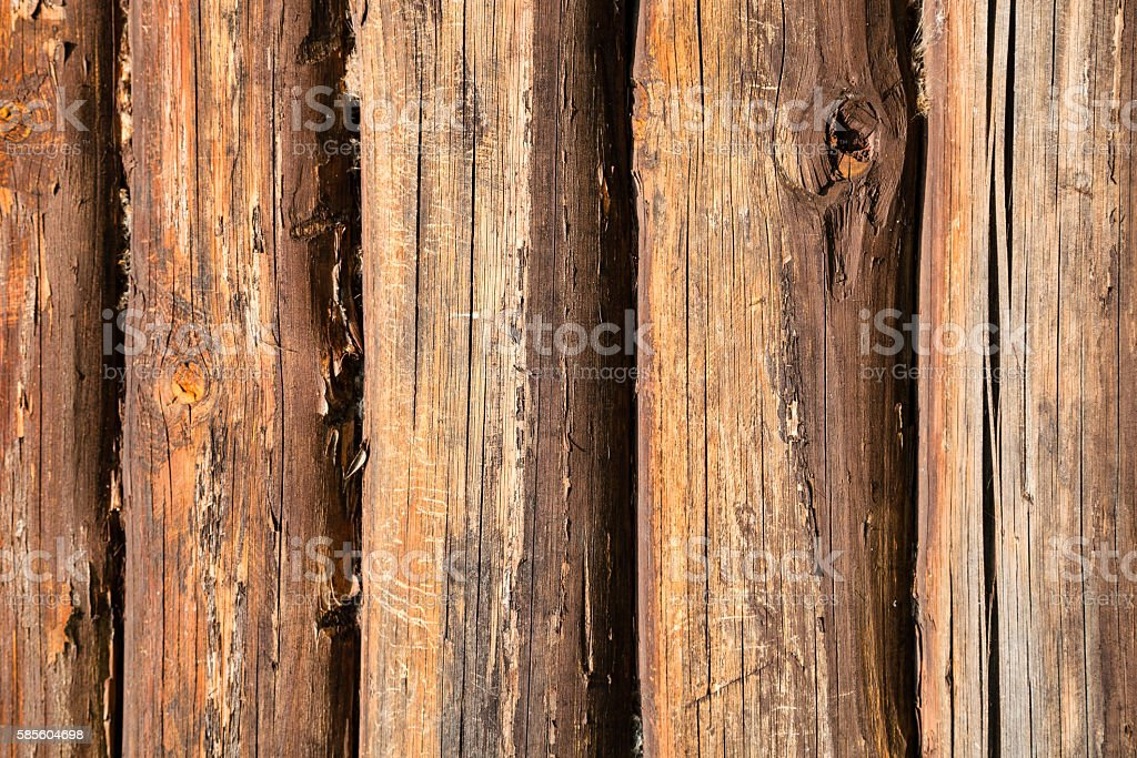 old oak trunks of country house wall stock photo
