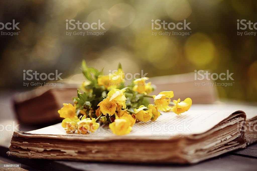 Old open book and bouquet of yellow buttercups. stock photo
