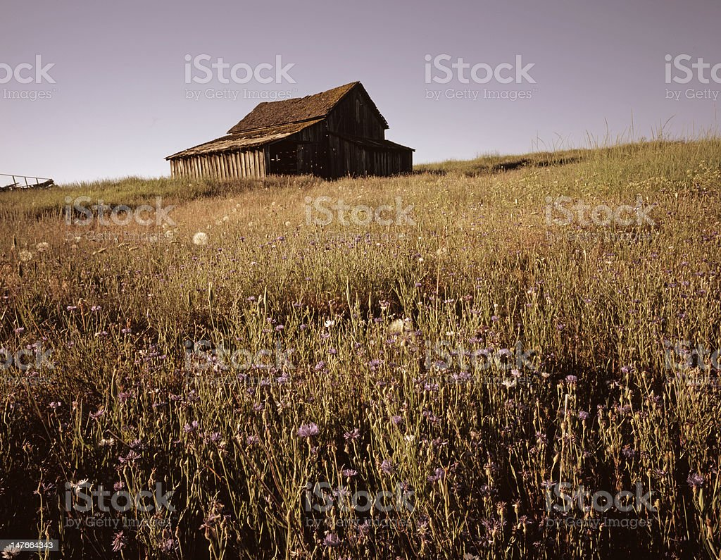 Old Oregon Turn of the Century Barn royalty-free stock photo