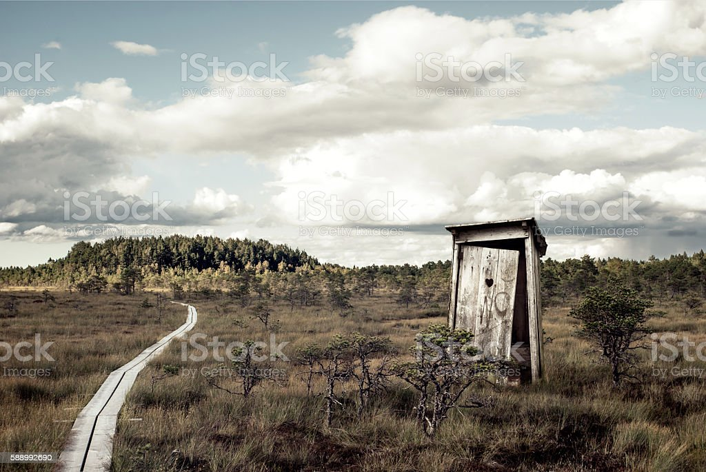 Old outhouse in the middle of wetland stock photo