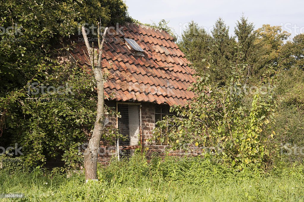 old overgrown shack royalty-free stock photo