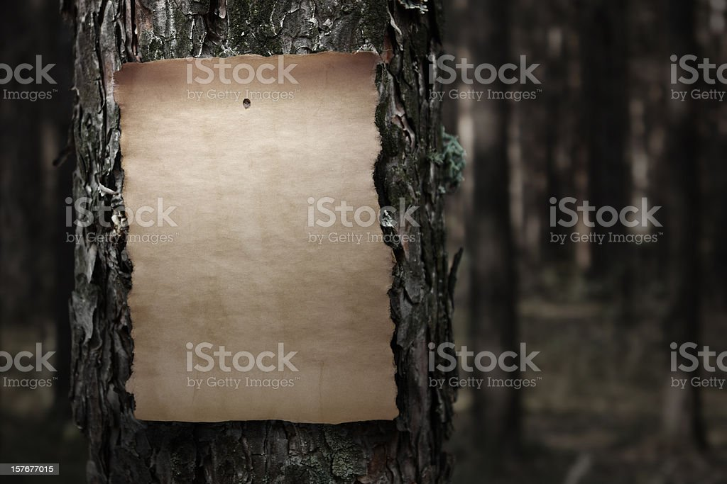 Old paper on tree trunk royalty-free stock photo