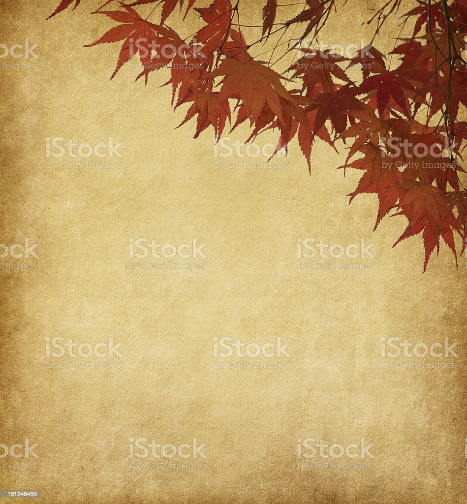 old paper with red autumn leaves royalty-free stock photo