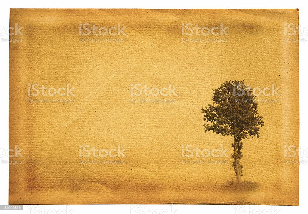 old paper with tree royalty-free stock photo