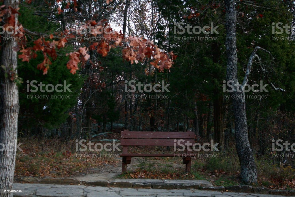 Old Park Bench stock photo