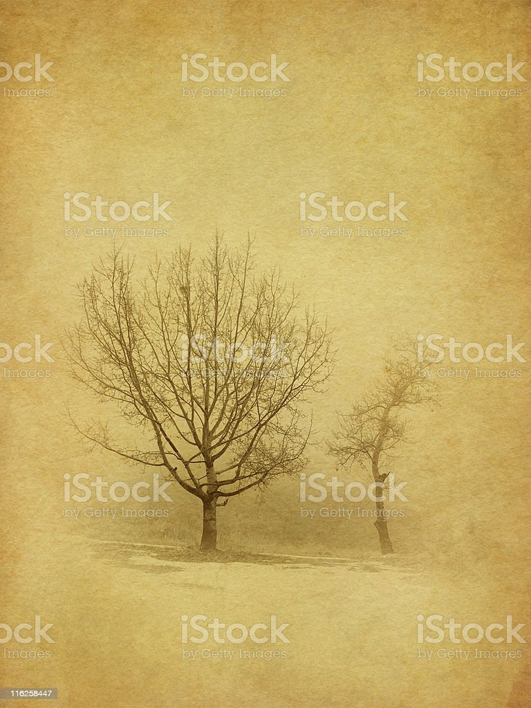 old photo - two trees in fog royalty-free stock photo