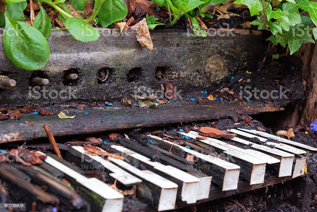 Old piano left to become overgrown with plants and vegetation stock photo