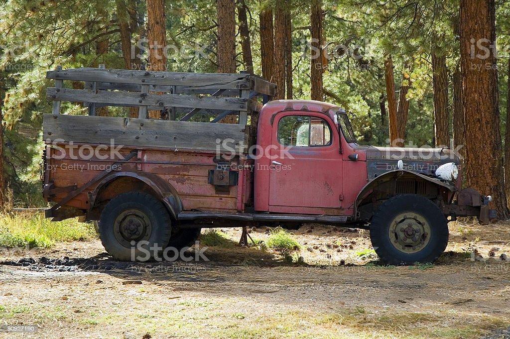 Vecchio Camion Pick-up nel bosco foto stock royalty-free