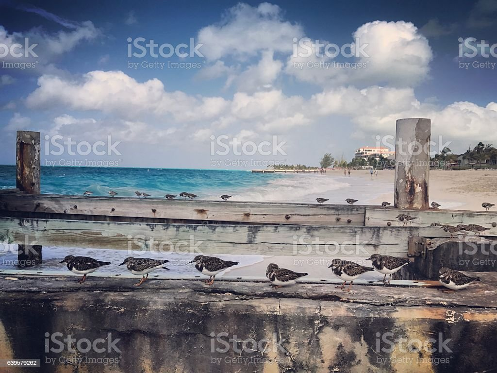 Old Pier on Grace Bay beach, Turks and Caicos Islands stock photo