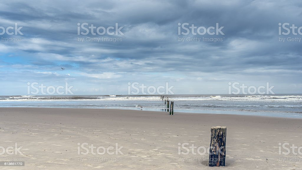 Old pier posts in sand that lead to horizon stock photo