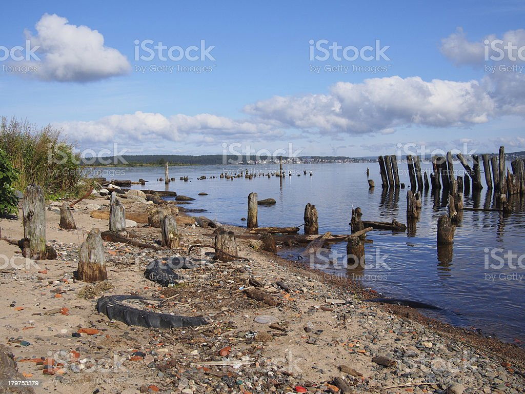 old piles in the lake royalty-free stock photo