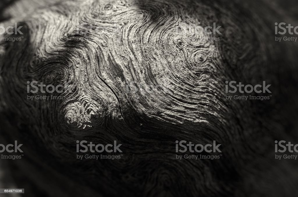 old pine wood stock photo