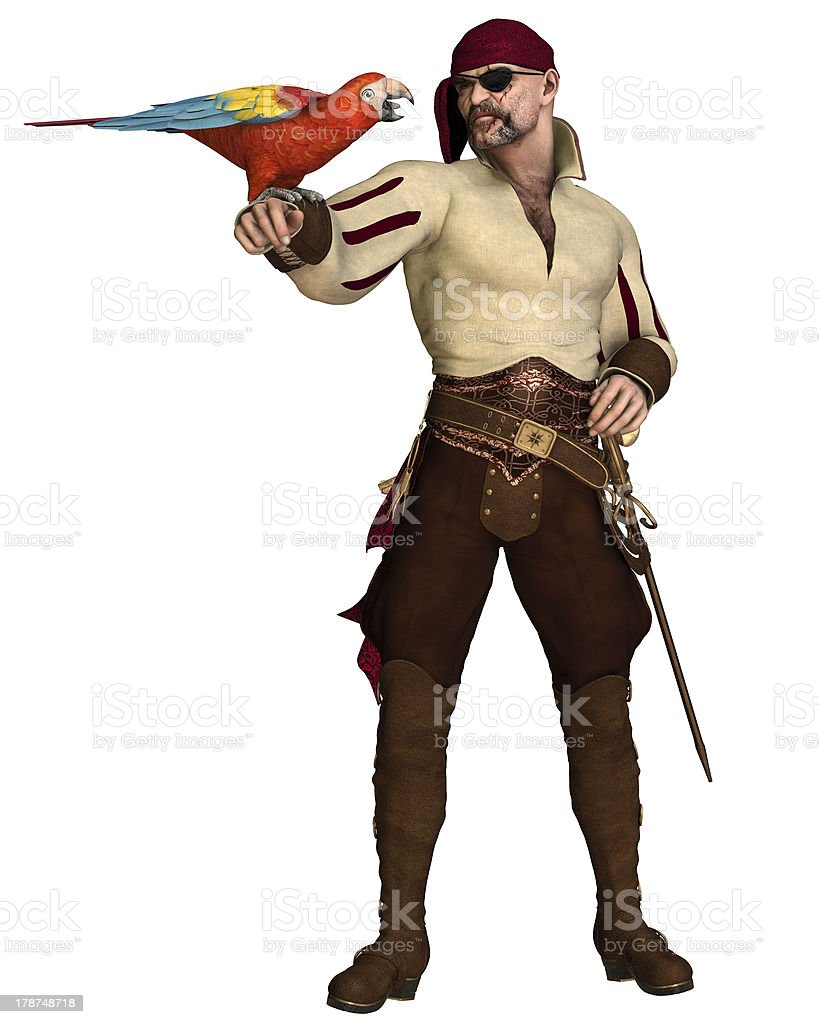 Old Pirate with Parrot royalty-free stock photo