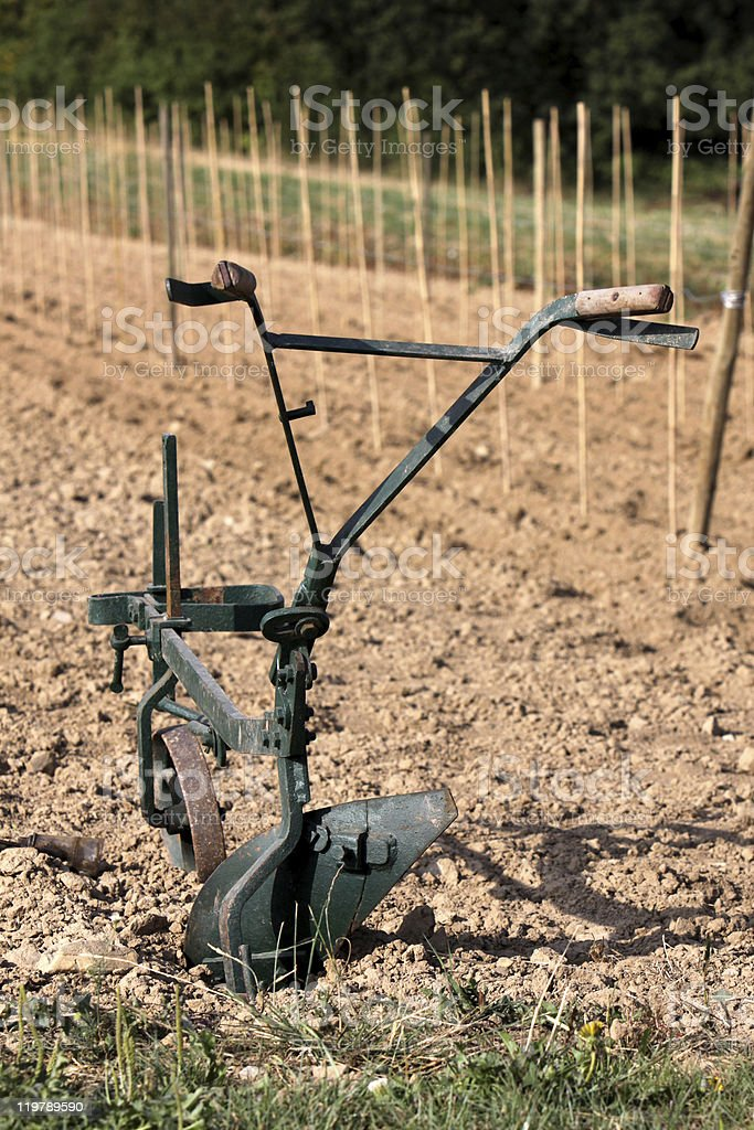 Old plow stands in a field stock photo