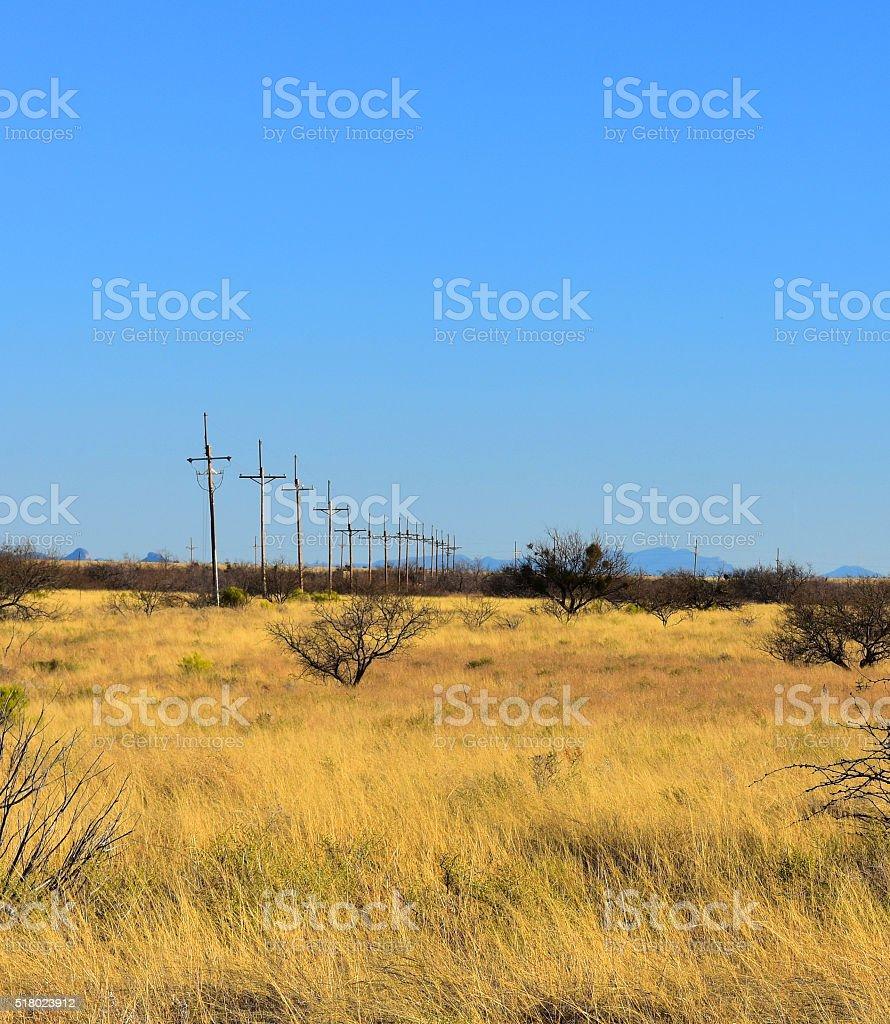 Old Poles stock photo
