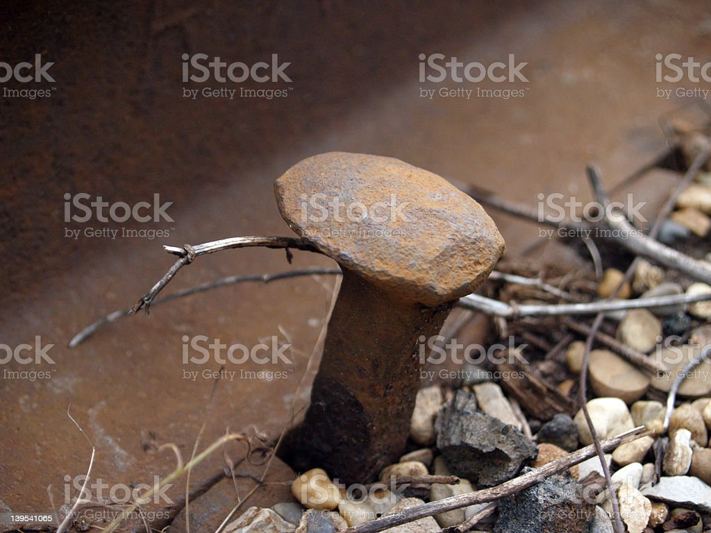 Old Railroad Spike stock photo