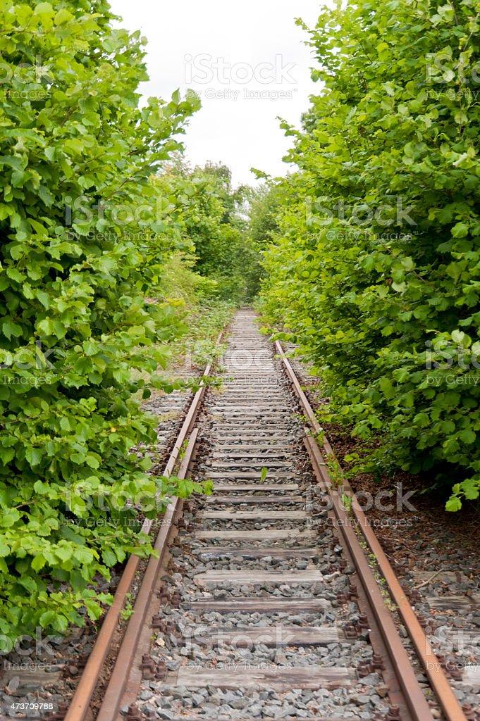 Old Railroad Track stock photo
