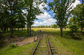 Old railway in the summer forest.