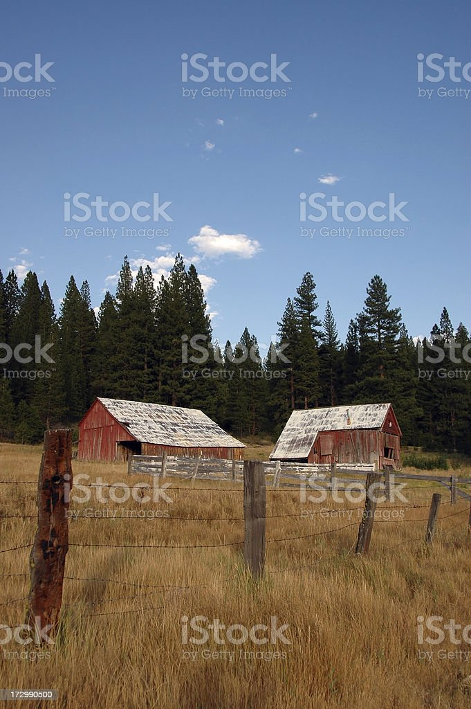 Old Red Barns royalty-free stock photo