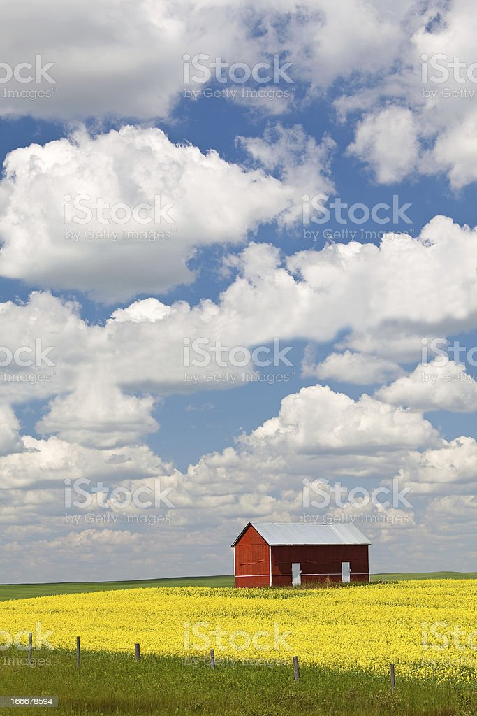 Old Red Grain Bin on the Great Plains royalty-free stock photo