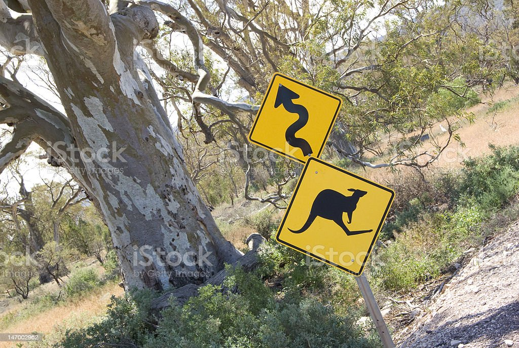 Old Red Gum and Kangaroo Sign royalty-free stock photo