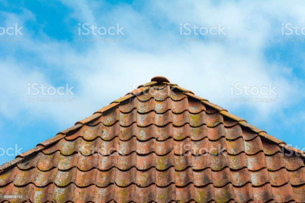 Old red roof with lichen stock photo