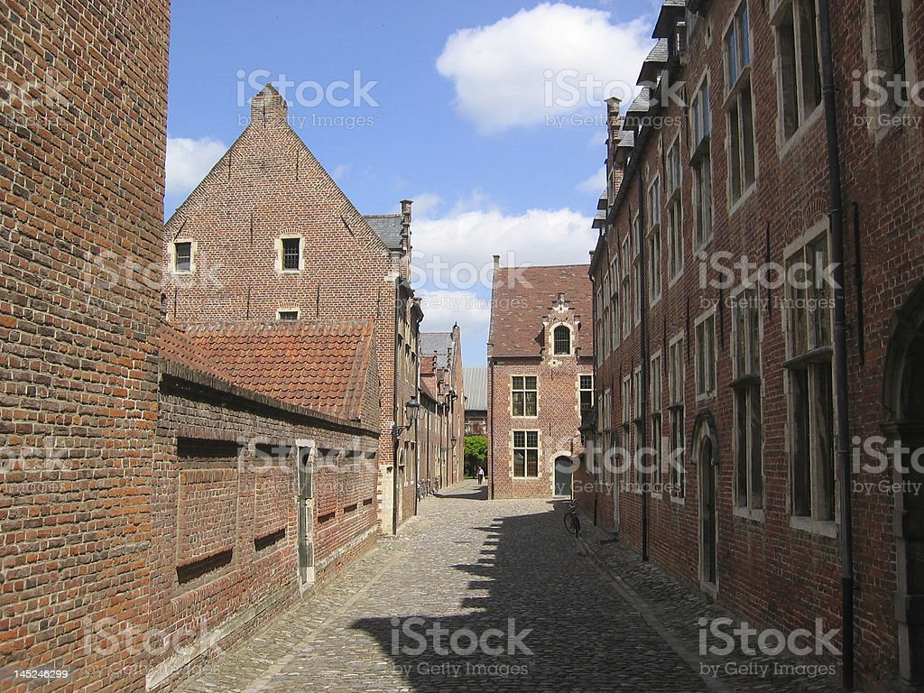 Old Road with Traditional Houses royalty-free stock photo