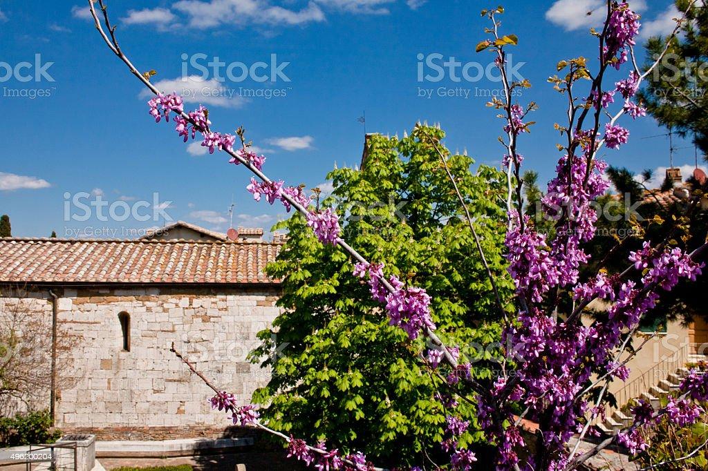Old roman church in garden stock photo