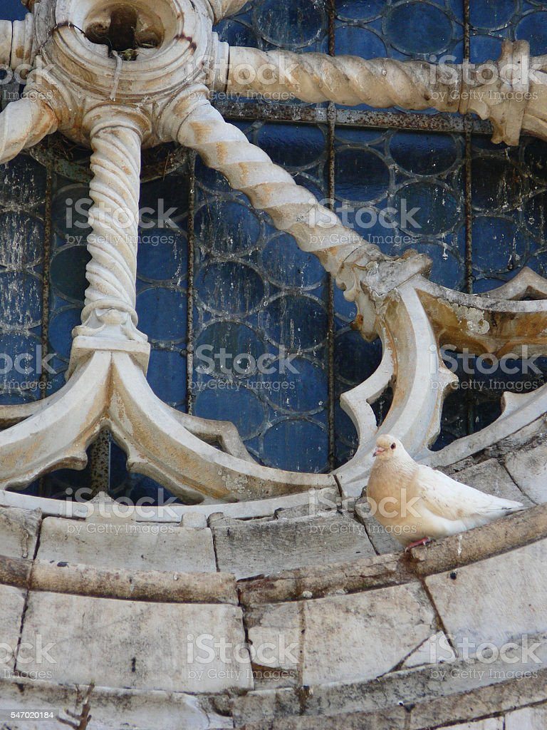 Old rose window of romanesque church with a dove stock photo