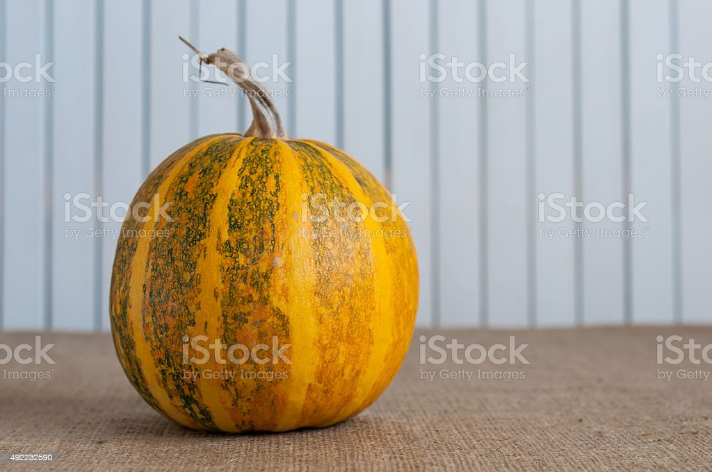 Old rural table with striped pumpkin, space for a text stock photo