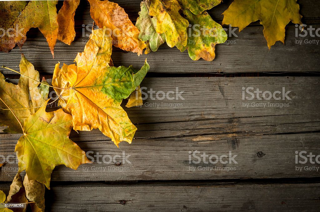 Old rustic wooden table with autumn leaves stock photo