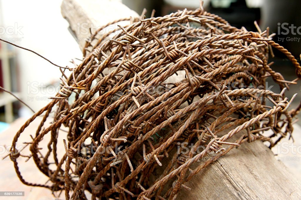 Old rusty barbed wire encrusted stock photo