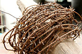 Old rusty barbed wire encrusted