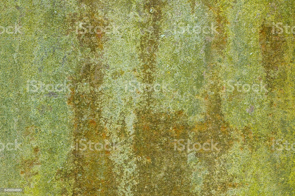 Old rusty metal sheet covered with moss royalty-free stock photo