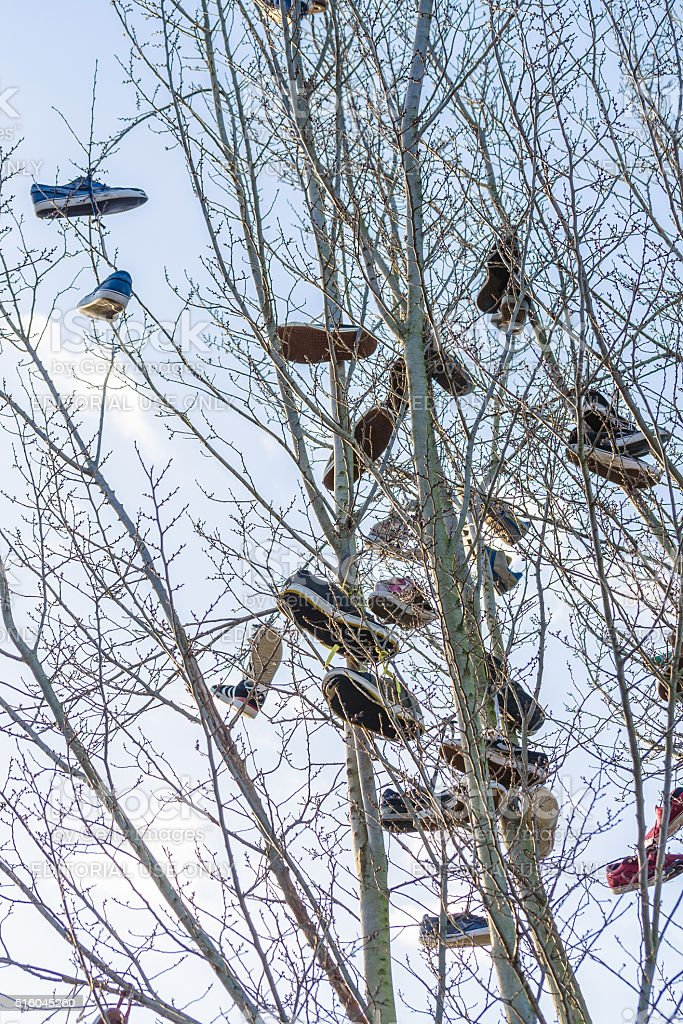 Old schottischeTraditon, Shoe tossing or also called Shoefiti. stock photo