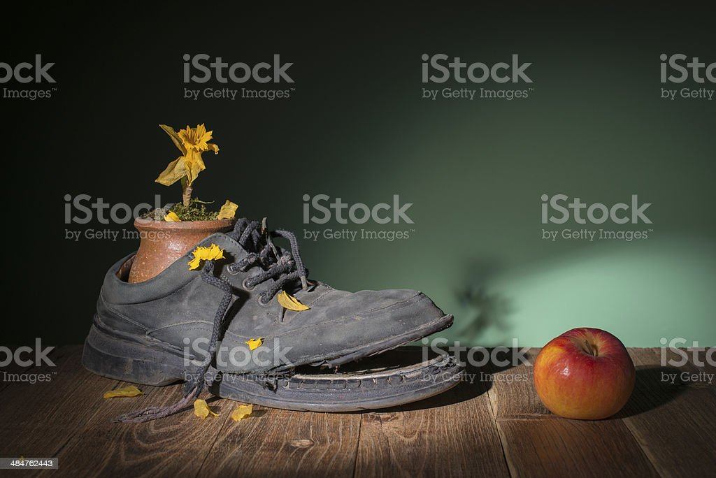 Old shoes and dried flowers stock photo