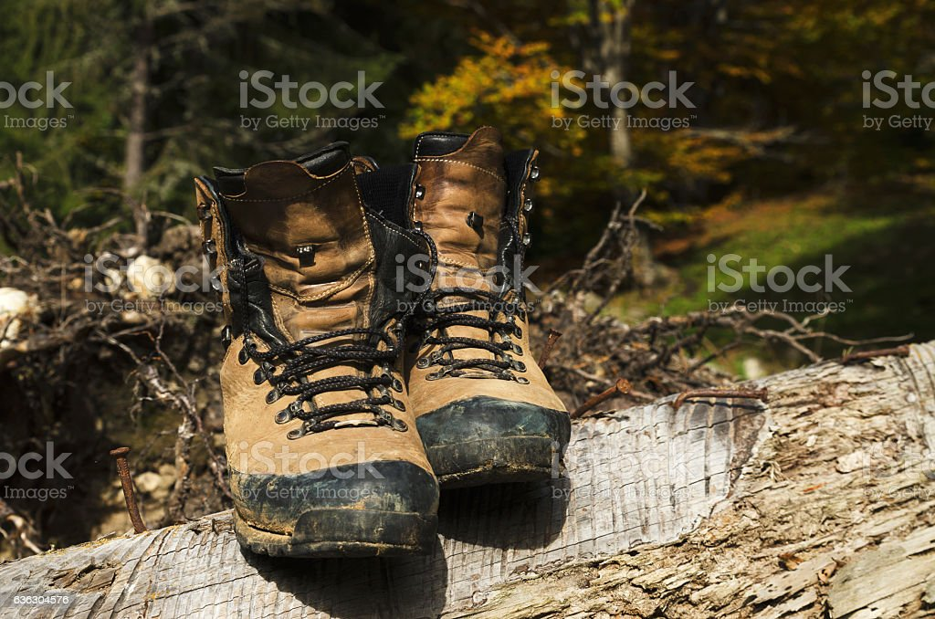 Old shoes on a cut tree stock photo
