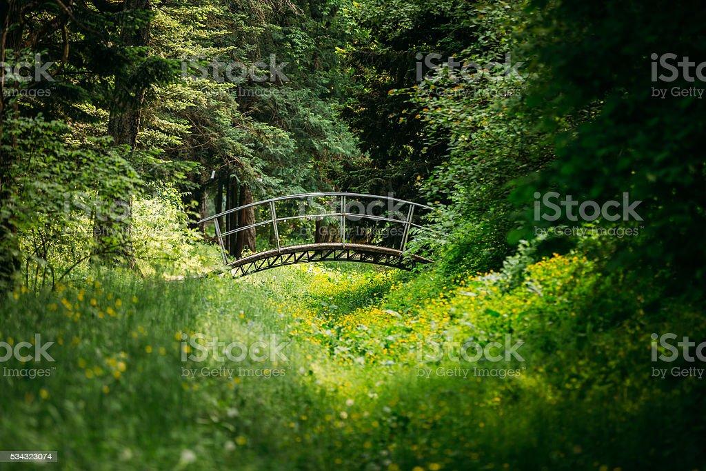 Old small decorative bridge in summer garden park forest. stock photo