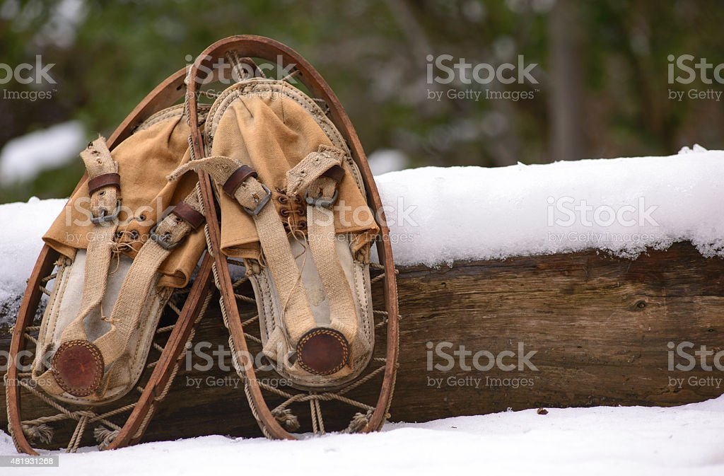 Old Snowshoes stock photo