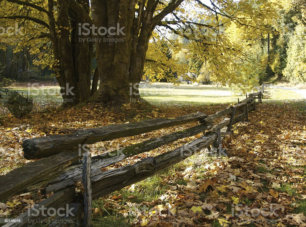 Old Split Rail Country Fence stock photo
