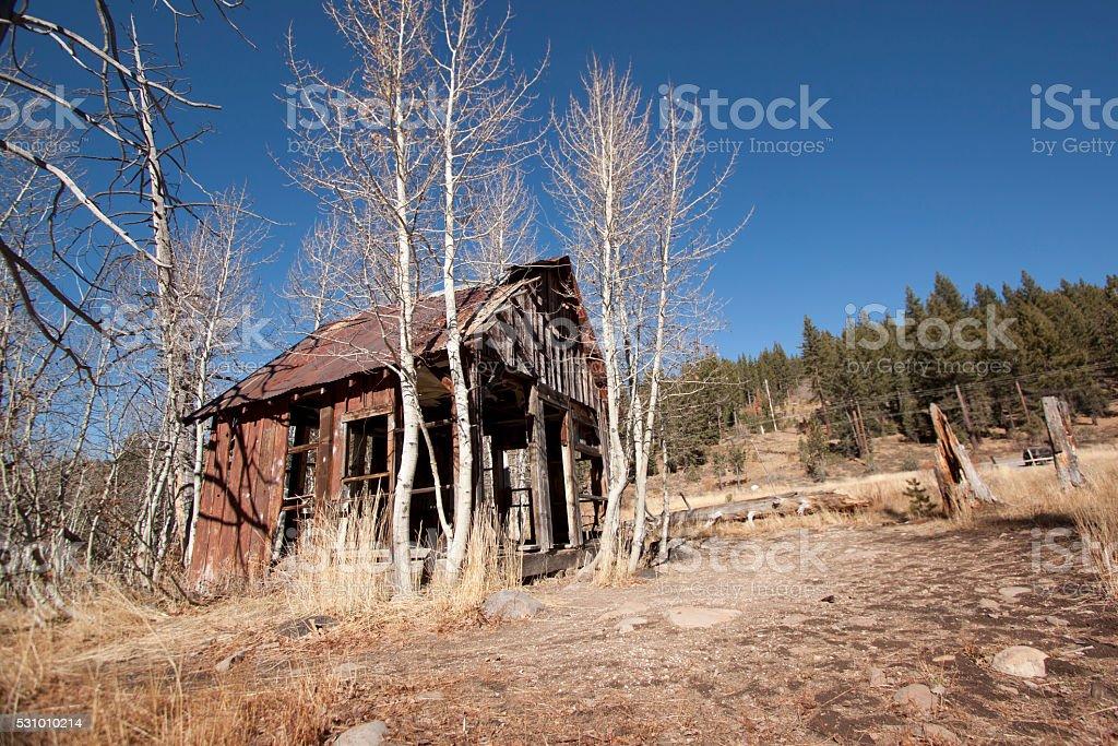 Old spooky shack stock photo
