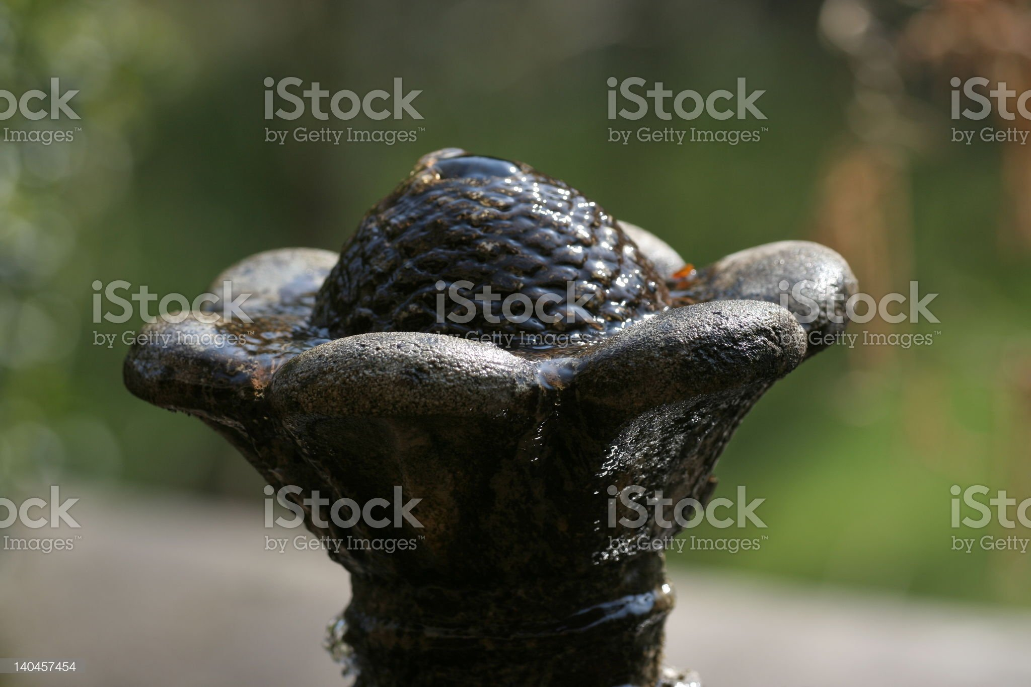 Old spring royalty-free stock photo