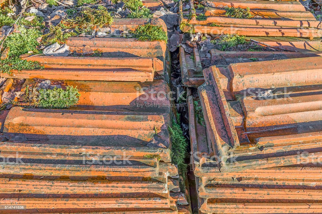Old stacked roofing tiles with moss over rampantly grows stock photo