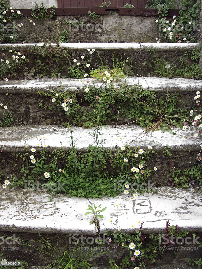 Old Stairs w. Flowers royalty-free stock photo