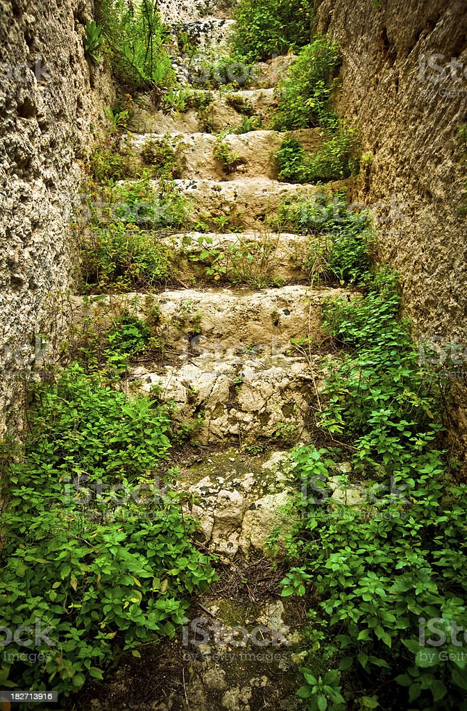 old Stairway in Italy royalty-free stock photo