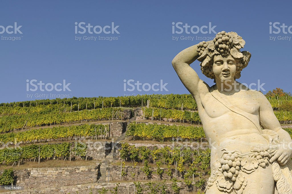 Old Statue before Vineyards stock photo