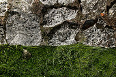 old stone and green grass